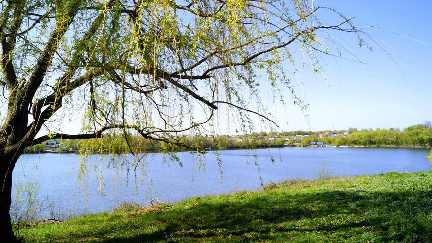 Ушаковский пруд .JPG