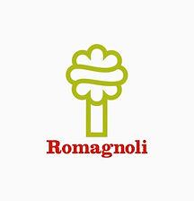 logo romagnoli.jpg