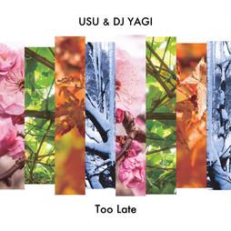 USU&DJ YAGI - Too Late