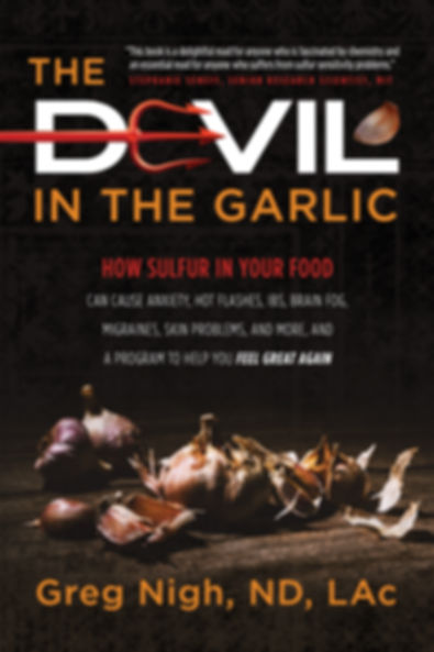 TheDevilInTheGarlic-CoverComp_4.jpg