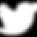 logo_twitter_peq_white.png