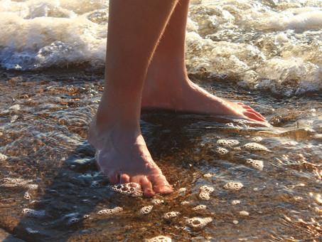 Get Your Feet Wet: First Weeks Homeschooling
