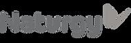 naturgy_logo.png