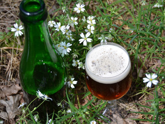 Wild Gruit Brewing. The Alchemy of Herbal Libations