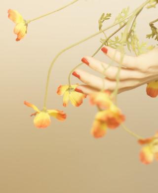 bloom010.jpg