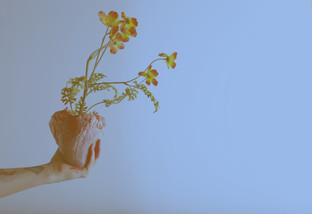 bloom003.jpg