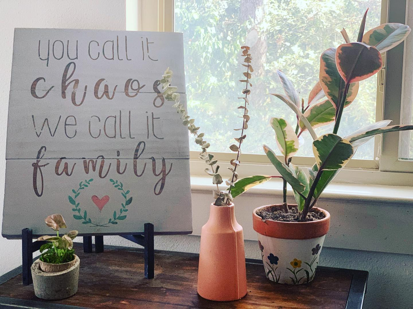 Thankful for our chaotic family!!!! ... and pink plants that look so classy, yet vintage!! #waterwednesday #pinkplants #plantsmakepeoplehappy #thankful #waxplant #pinkarrowhead #eucalyptus #pinkpottery