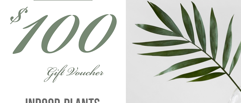 Gift Voucher - $100.00