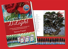 essence book with red background RGB.jpg