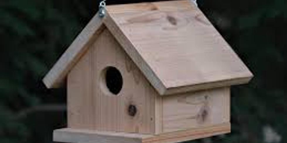 Summer camp Bird Houses