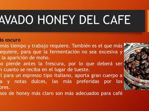 LAVADO HONEY DEL CAFE 3 DE 3