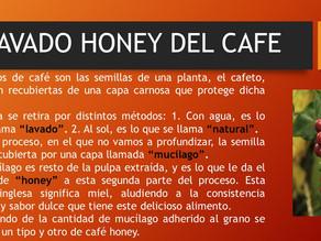 LAVADO HONEY DEL CAFE 1 DE 3
