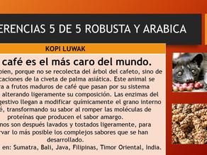 DIFERENCIAS ROBUSTA Y ARABICA 5 DE 5