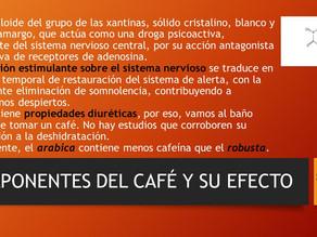 COMPONENTES DEL CAFÉ Y SU EFECTO 1 DE 3