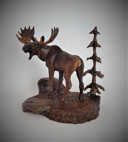 """Yellowstone Moose"""