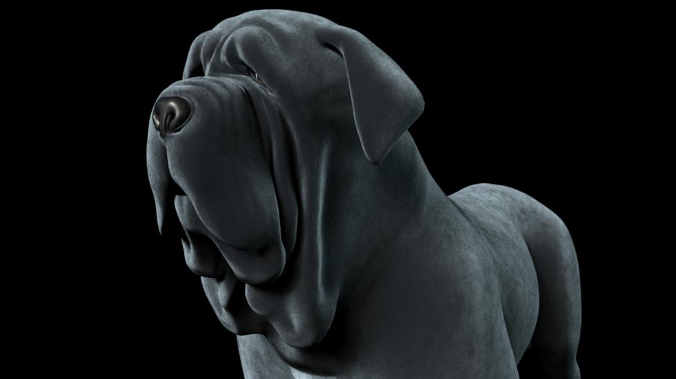 Don Vito - La Trufa Canina