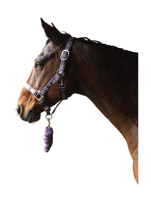 Hy Tartan Head Collar with Lead Rope