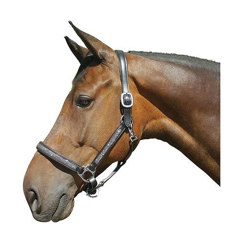Hy Encrusted Leather Head Collar - Black