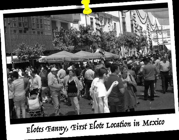 elotes-fanny-elotes-en-mexico-image.png