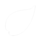 Leaf_icon_white.png