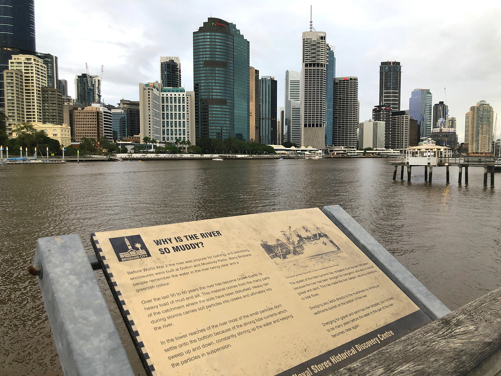 View of the river and Brisbane skyline from the bottom of Kangaroo Point Cliffs Park