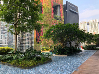 Hotel Review: Sofitel Singapore City Centre (Prestige Suite)