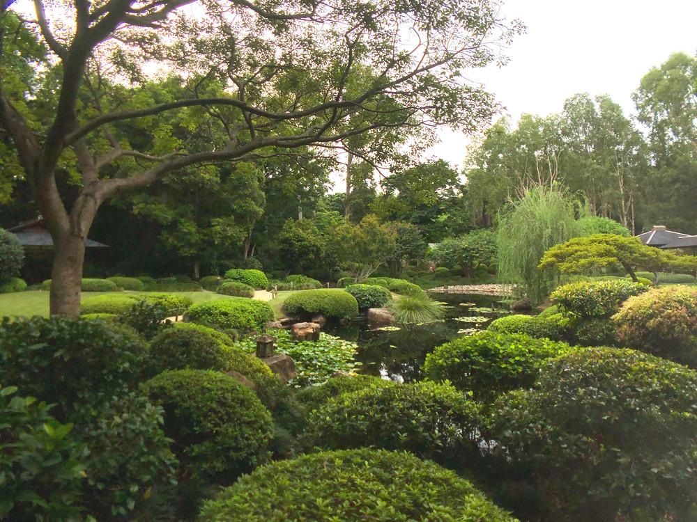 Enjoy the serenity of the Japanese Garden within Brisbane Botanic Gardens