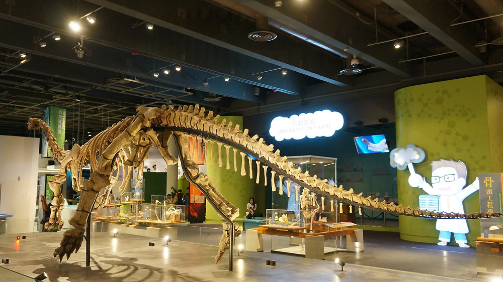 Replica of a dinosaur fossil at Hong Kong Science Museum