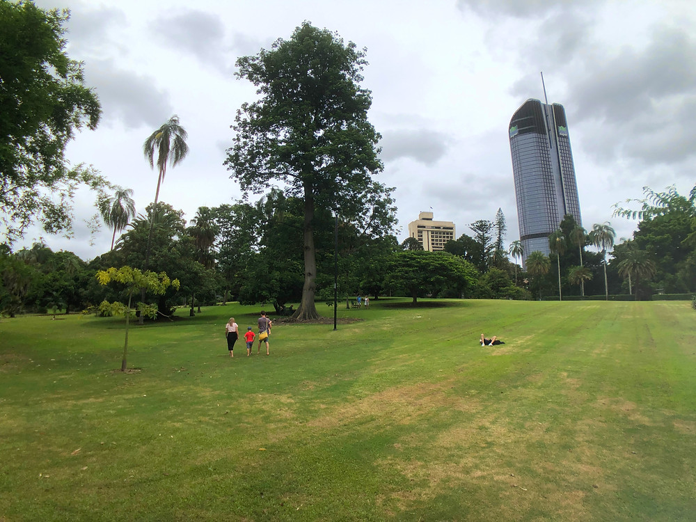 Relax in the wide spaces while at Brisbane City Botanic Gardens