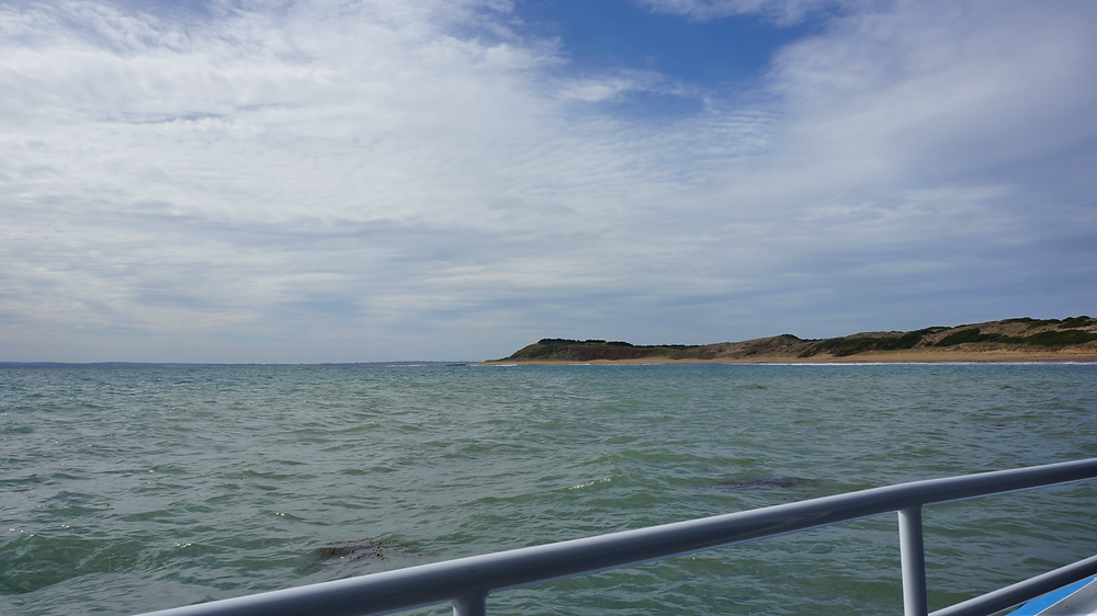 Looking back at Phillip Island as the tour comes to an end
