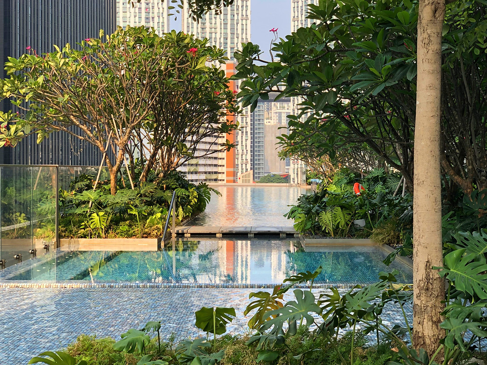 The famous Jacuzzi and swimming pool at Sofitel Singapore City Centre
