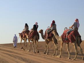 Desert Safari with Platinum Heritage
