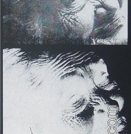 Exposición de Manolo Ramírez