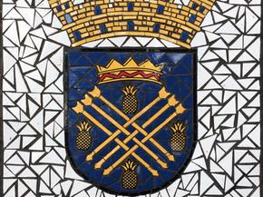 """Escudo de Caguas en Mosaico 18"""" x 18"""""""