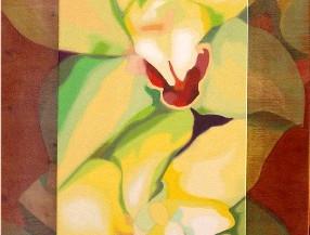 Orquidea Indonesia, 2005