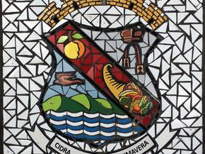 """Escudo de Cidra en Mosaico 18"""" x 18"""""""