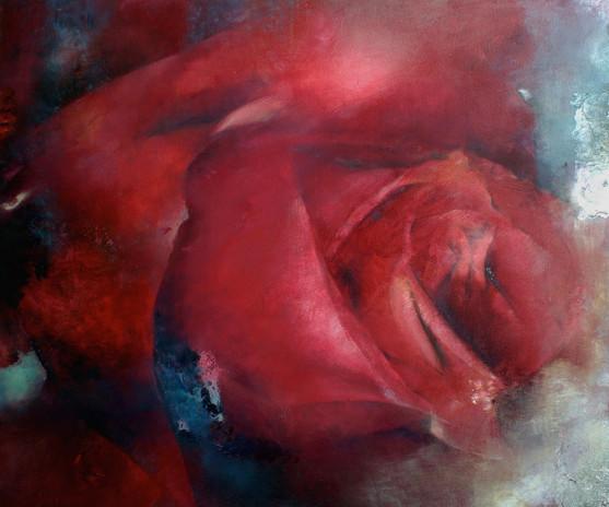 Rose Bretonne