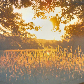 Slow Ride Sunset