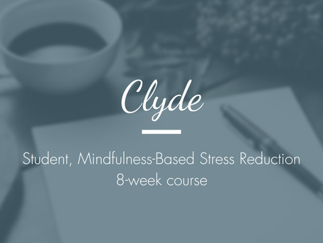 Clyde - Student, Mindfulness-Based Stress Reduction 8-week course