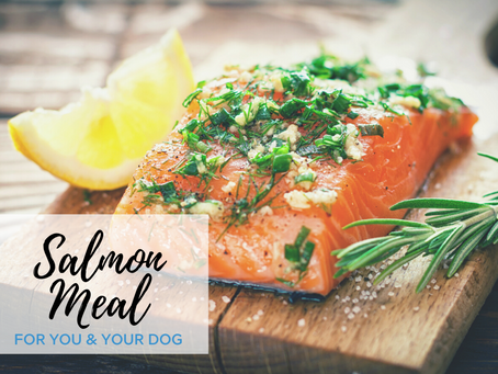Salmon Dinner for You & Your Dog