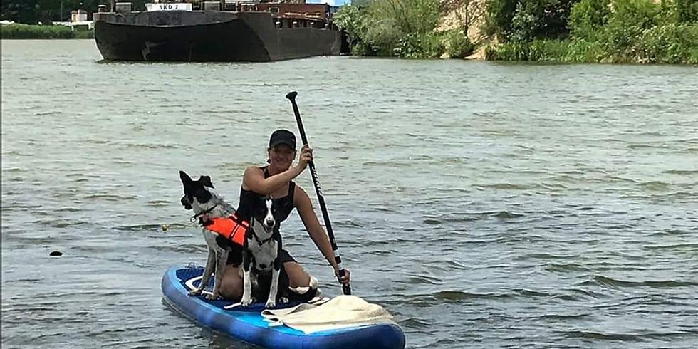 Stand up Paddeln mit Hund