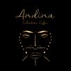 andina logo circle.png