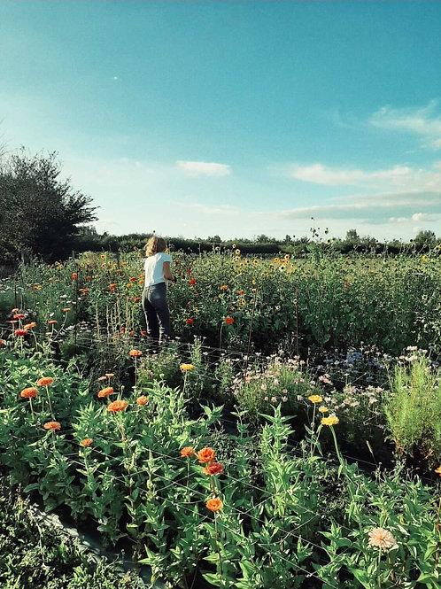 Atelier Exclusif Dim 26 Sept Fleurs D'Aquitaine x Mrs Whiterose