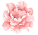 Carie's Creek - Flower.png