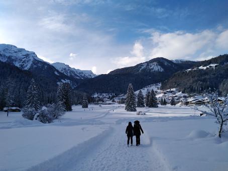 Inverno, neve e i suoi mercanti