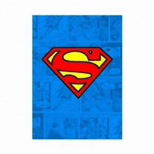 Superman Magnet
