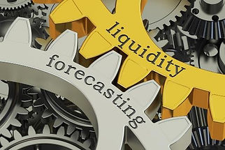The Energy CFO Cash Forecasting and Cash Management Services.jpg