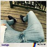 indigo cover.jpg