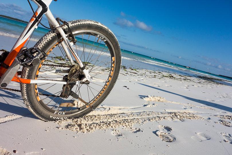 Beach 1 (3).jpg