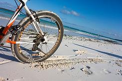 Beach- Broman